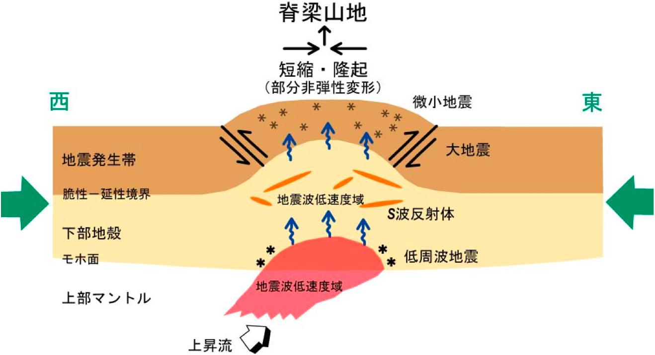 図5 東北地方脊梁山地のひずみ集中帯を説明する 本研究では、陸域では新... 地震調査研究プロジ